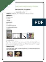 GUIAS LABORATORIO BIOLGIA SEXTO GRADO.doc