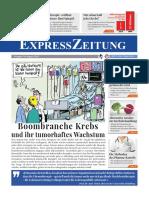 +++Express-Zeitung - Ausgabe 34, August 2020 - Leseprobe (19 Seiten Fakten, Bewusstsein!)