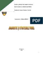 Diagnosticul Si Strategiile Firmei Curs