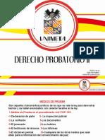 DERECHO PROBATORIO[20]