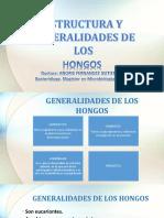 DIAPOSITIVA HONGOS ESTRUCTURA Y GENERALIDADES