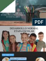 Desarrollo - Entrevista Escolares
