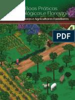 Guia de Boas Praticas_Final_digital.pdf