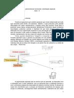Aula 05 - Conceitos psicomotores funcionais - orientação espacial
