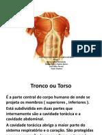 PROTEÇÃO DE TRONCO E CORPO INTEIRO.pptx