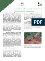 Experiências de Recuperação de Áreas Alteradas na Amazônia Brasileira