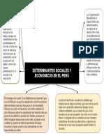 DETERMINANTES SOCIALES Y ECONOMICOS EN EL PERU