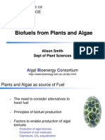 Alison_Smith_-_University_of_Cambridge_-_Biofuels_from_Plants_and_Algae