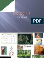 Biologia PPT - Aula 01 Origem da Vida