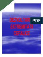 Curs-4.pdf