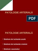 6_artere (1).ppt