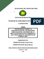Tesis Aquino Palcios 2020