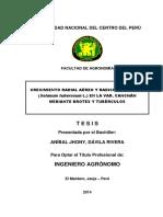 Davila Rivera.pdf