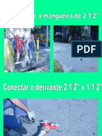4.1 BI - MANGUEIRA