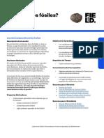whatarefossils_-_es_0.pdf