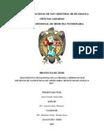 """""""DIAGNÓSTICO SITUACIONAL DE LA CRIANZA CAPRINA EN DOS DISTRITOS DE LA PROVINCIA DE CHURCAMPA, REGIÓN HUANCAVELICA 2017""""."""