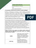 INFORMACION ESTRATEGICA DEL CONSUMIDOR