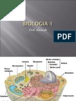 Biologia PPT - Aula 08 Visao Geral da Celula