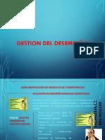 Gestión del Desempeño.ppt.pdf