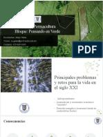 Problemáticas ambientales del siglo XXI.pptx
