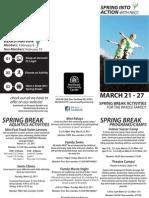 2011 NECC Spring Break Flyer