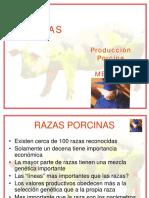 4 Razas y líneas porcinas.pdf