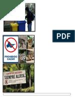 afiche ecosistema