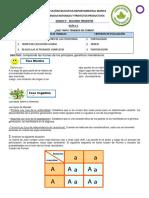 Guía 4 Grado 9 CNYPP.pdf