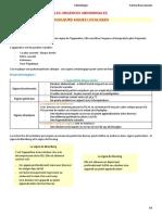 1)serine bouzouaoui 2017.2018(2).pdf