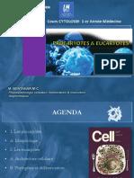 cyto1an-procaryotes_eucaryotes.pdf