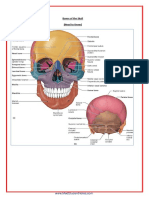 A&P - ALL FILES IN ONE.pdf