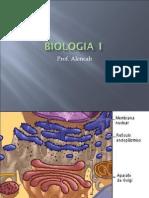 Biologia PPT - Aula 11 Sistema de Endomembranas
