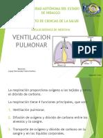 ventilacionpulmonar-141010000137-conversion-gate01