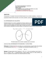 17 Clase No. 17 El Determinante