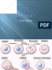 Biologia PPT - Aula 14 Divisão Celular