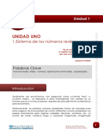 Lectura_Numeros Reales.pdf