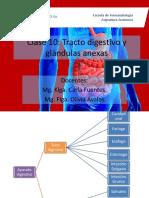 Clase 10 tracto digestivo.pdf
