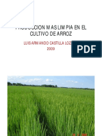 120produccion_mas_limpia_arroz_fedearroz_castilla