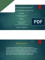 Criterios Impositivos y Beneficios Fiscales.pdf