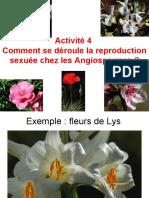 4-ReproAV-chap1-5fleur-1 (3)