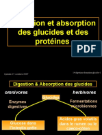 14-digestion_absorption__glucides__proteines