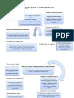 Esquema sobre  proceso de formación de las leyes.docx