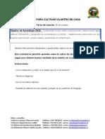 Instructivo para cultivar cilantro.docx
