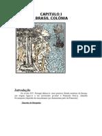 Brasil Colonia. A Expansao maritima