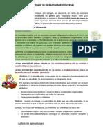 2° Análisis y síntesis (1)
