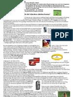 Infoletter Nummer 13 zum Transalp 2006