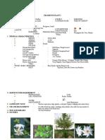 1599738931274_data sheet format