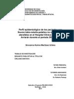 2017-Perfil epidemiológico de los pacientes con fisuras labio-máxilo-palatina no sindrómicas atendidos en el Hospital San Borja Arriarán durante el período 2005-2015