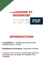 PALUDISME ET GROSSESSE M2 2018-2019-1.pptx