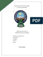 Informe:CONSERVACION DE LA ENERGIA (FIS100)